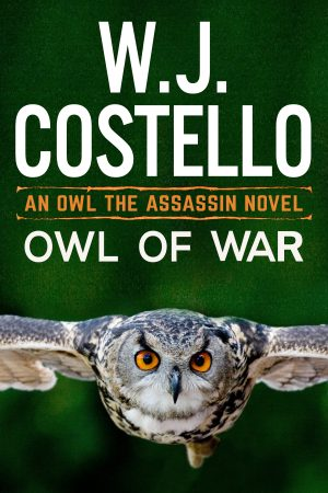 Cover for Owl of War