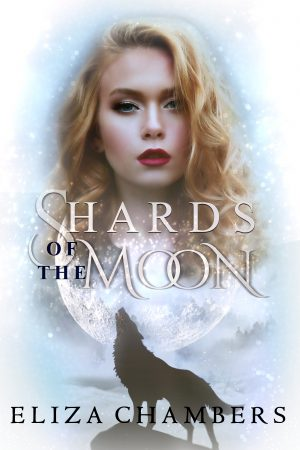 Cover for Shards of the Moon