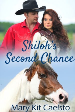 Cover for Shiloh's Second Chance