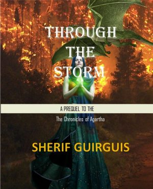 Cover for Through The Storm