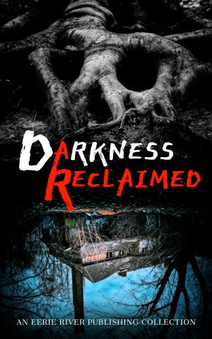 Cover for Darkness Reclaimed