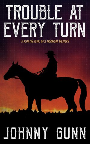 Cover for Trouble at Every Turn