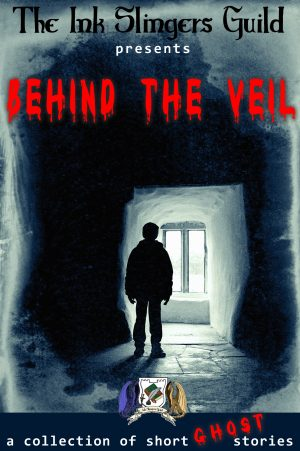 Cover for Behind the Veil