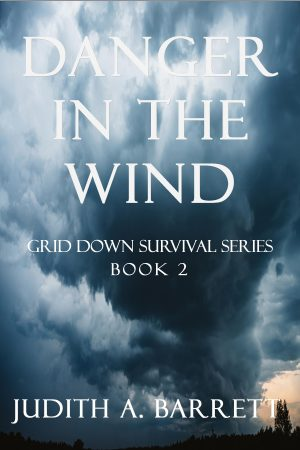 Cover for Danger in the Wind