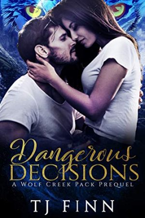 Cover for Dangerous Decisions