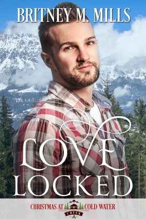 Cover for Love Locked