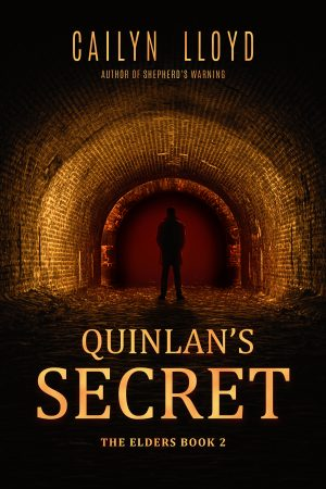 Cover for Quinlan's Secret
