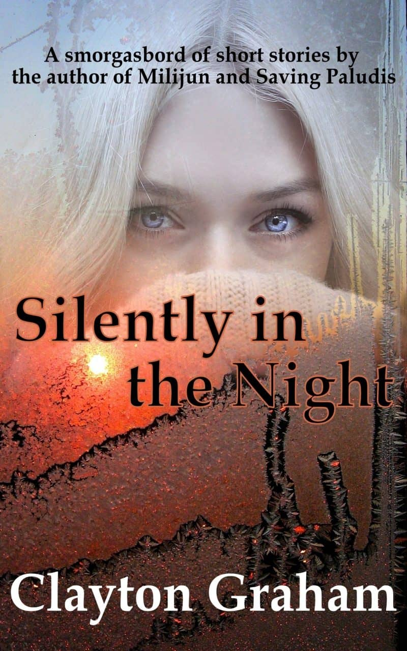 Cover for Silently in the Night