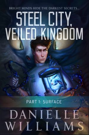 Cover for Surface