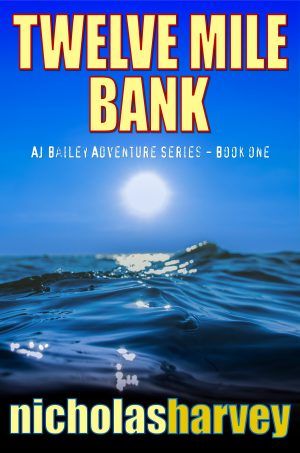 Cover for Twelve Mile Bank