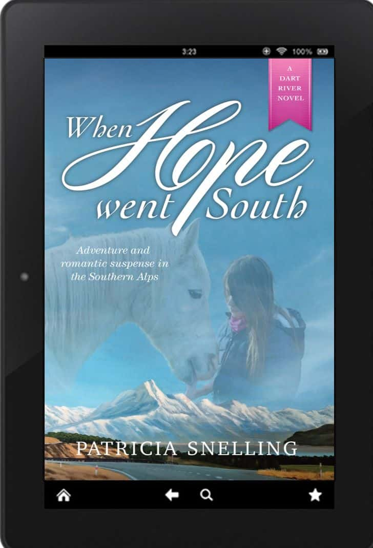 Cover for When Hope Went South