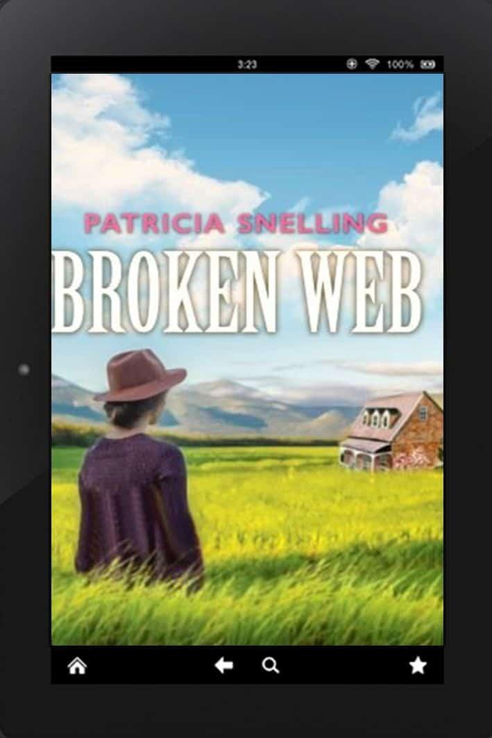 Cover for Broken Web