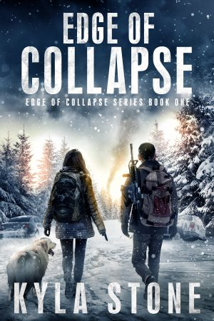 Cover for Edge of Collapse