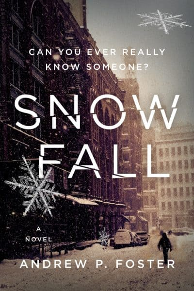 Cover for Snow Fall