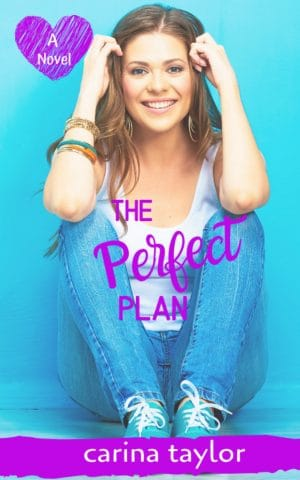 Cover for The Perfect Plan