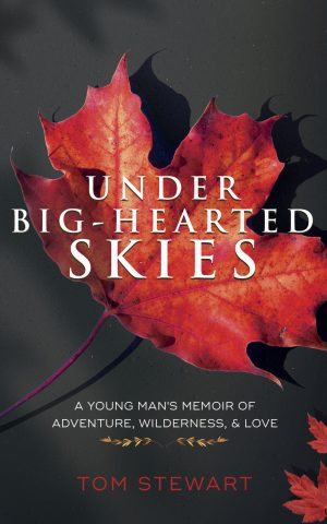 Cover for Under Big-Hearted Skies