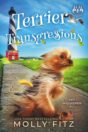 Cover for Terrier Transgressions