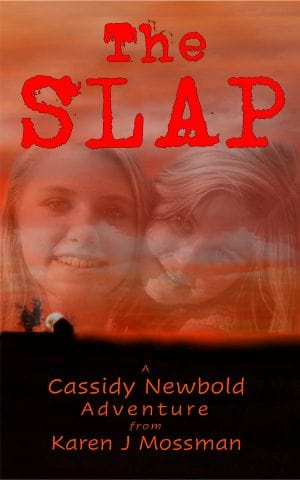 Cover for The Slap