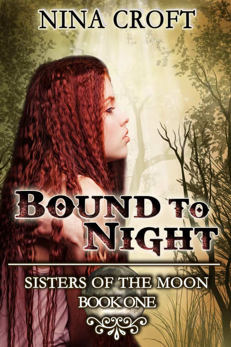 Cover for Bound to Night