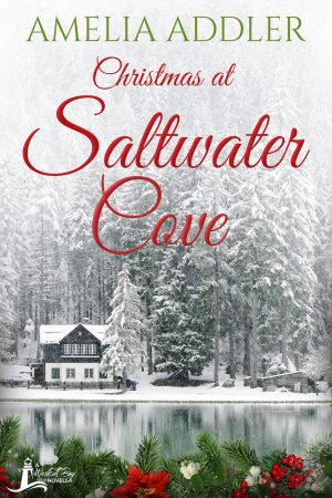 Cover for Christmas at Saltwater Cove