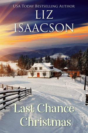 Cover for Last Chance Christmas