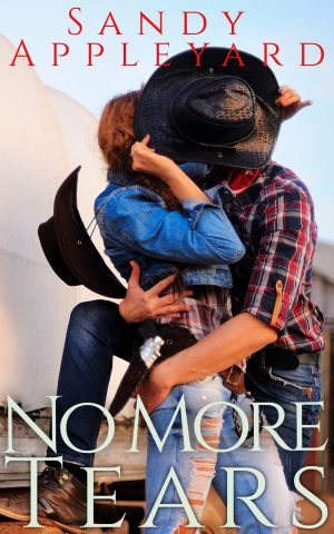 Cover for No More Tears