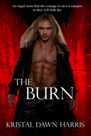 Cover for The Burn