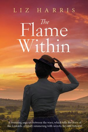 Cover for The Flame Within