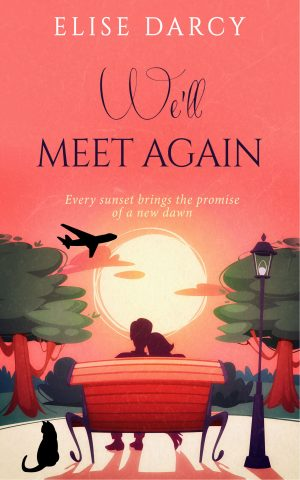 Cover for We'll  Meet Again
