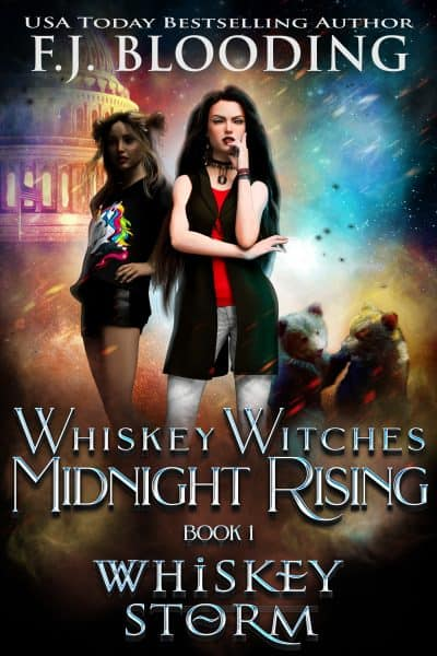 Cover for Whiskey Storm