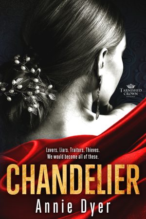 Cover for Chandelier