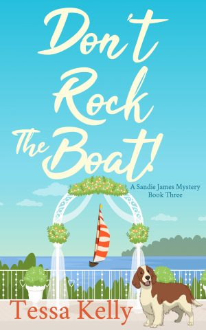 Cover for Don't Rock the Boat!