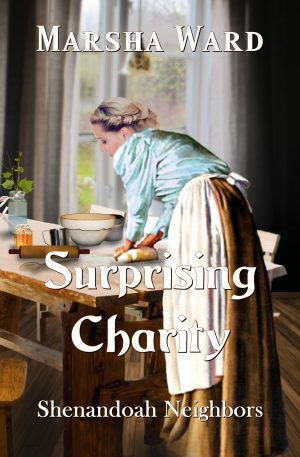 Cover for Surprising Charity