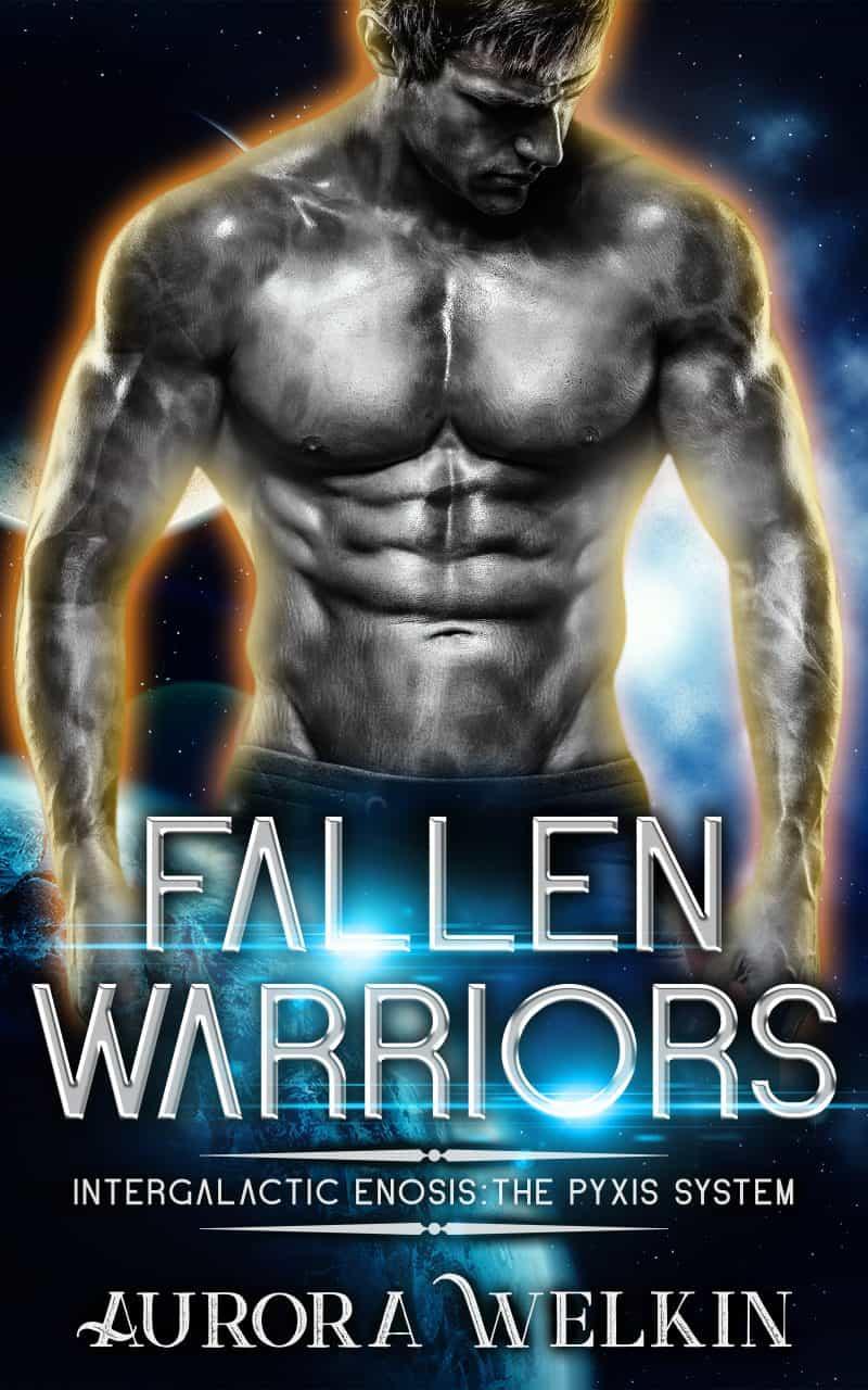 Cover for Fallen Warriors
