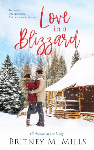 Cover for Love in a Blizzard