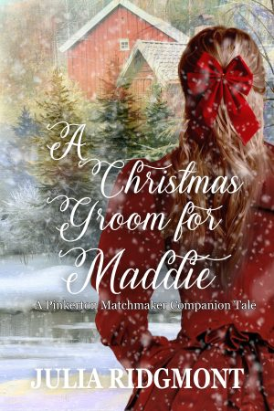 Cover for A Christmas Groom for Maddie