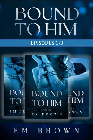 Cover for Bound to Him Box Set