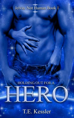 Cover for Holding out for a Hero