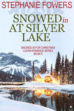 Cover for Snowed In at Silver Lake