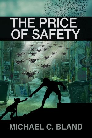 Cover for The Price of Safety