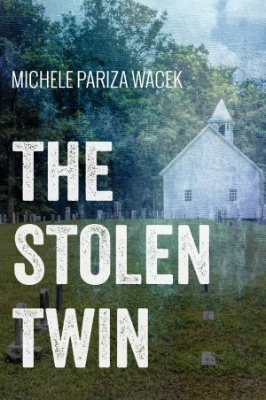 Cover for The Stolen Twin