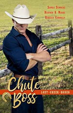 Cover for Chute Boss