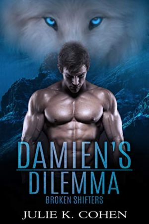 Cover for Damien's Dilemma