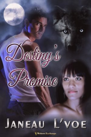 Cover for Destiny's Promise