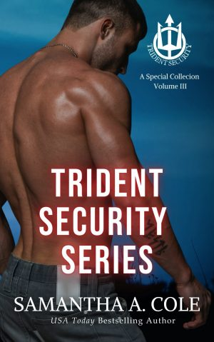 Cover for Trident Security Series: A Special Collection Volume III