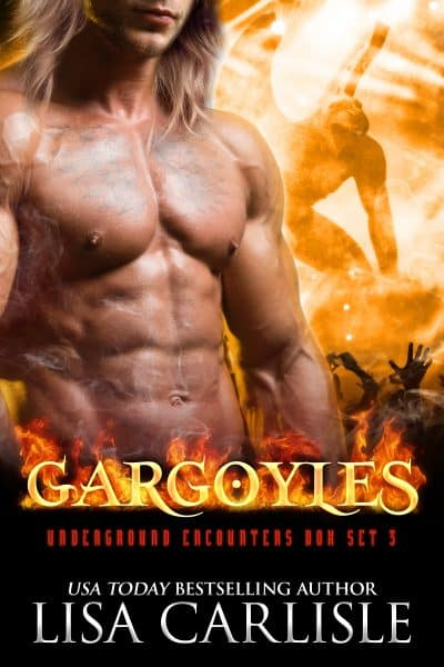 Cover for Gargoyles