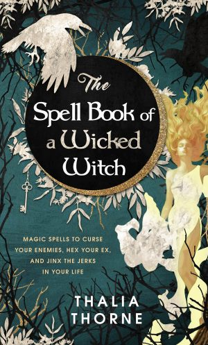 Cover for The Spell Book of a Wicked Witch