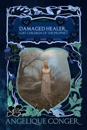 Cover for Damaged Healer