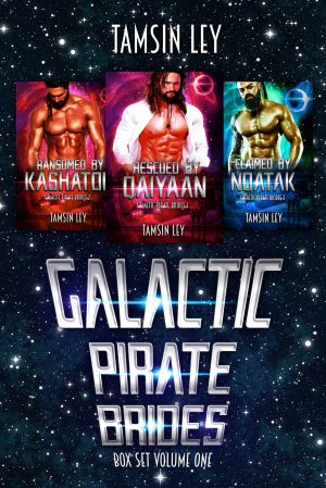 Cover for Galactic Pirate Brides