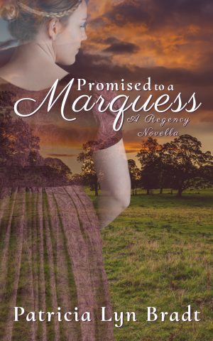 Cover for Promised to a Marquess